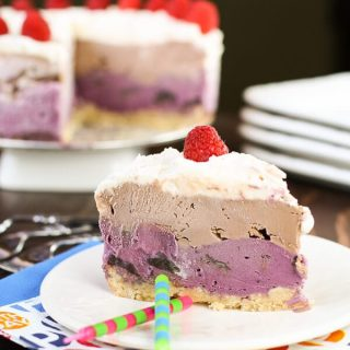 Raspberry Chocolate Chip Ice Cream Cake