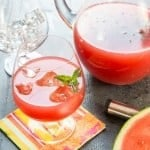 Watermelon Gin Punch (1 of 2)