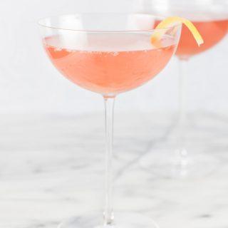 Sparkling Rhubarb Shrub Cocktails
