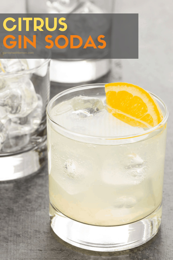 Close up of citrus gin soda with orange.