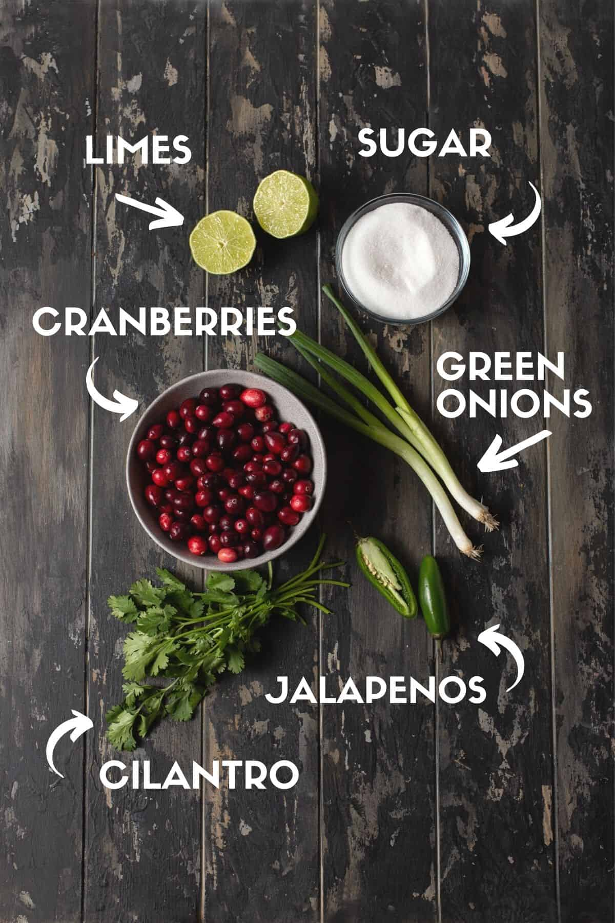Salsa and Cranberry ingredients text.